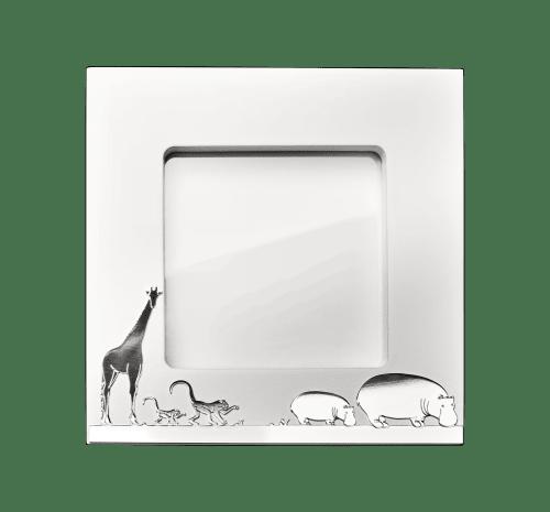cadre photo savane